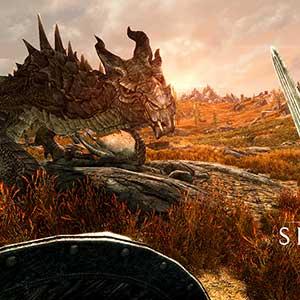 The Elder Scrolls 5 Skyrim VR - Dragon