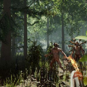 La survie de la forêt