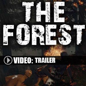 Acheter The Forest Cle Cd Comparateur Prix