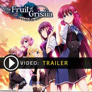 Acheter The Fruit of Grisaia Clé Cd Comparateur Prix