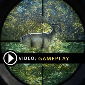The Hunter Call of the Wild 2019 Gameplay Video