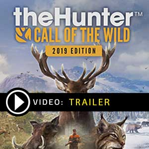 Acheter The Hunter Call of the Wild 2019 Clé CD Comparateur Prix