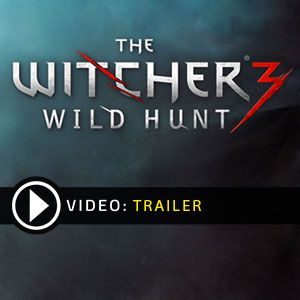 Acheter The Witcher 3 Wild Hunt Clé CD Comparateur Prix