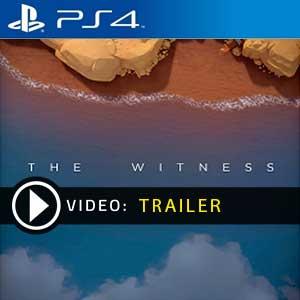 The Witness PS4 en boîte ou à télécharger
