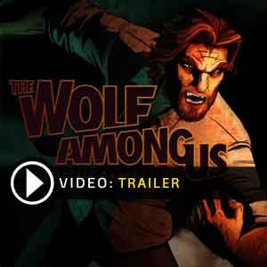 Acheter The Wolf Among Us clé CD Comparateur Prix