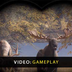 theHunter Call of the Wild Gameplay Video