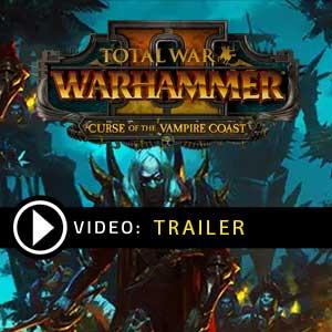 Acheter Total War WARHAMMER 2 Curse of the Vampire Coast Clé CD Comparateur Prix