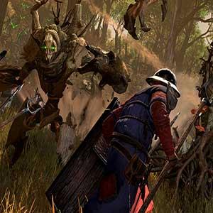 Armées des elfes des bois