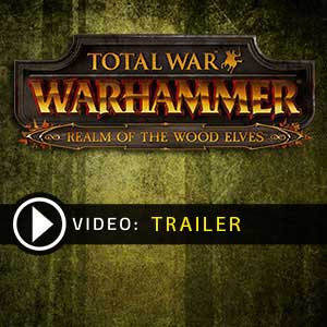 Acheter Total War WARHAMMER Realm of The Wood Elves Clé Cd Comparateur Prix