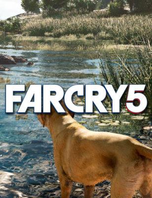 Une vidéo de Far Cry 5 présente un désordre impressionnant !