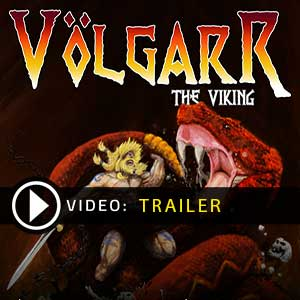 Acheter Volgarr the Viking Cle Cd Comparateur Prix