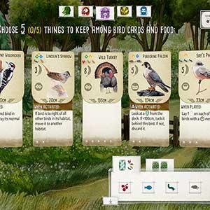Wingspan - Cartes d oiseaux