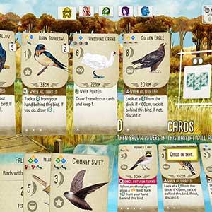 Wingspan - Réserve d oiseaux