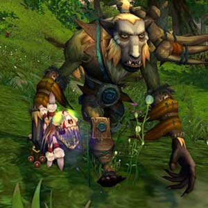 World of Warcraft Mists of Pandaria Personnage