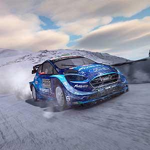 WRC 9 Ford Fiesta</span>