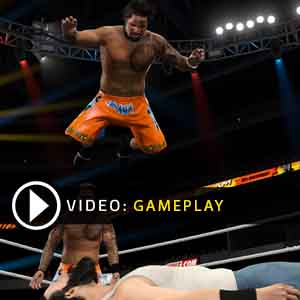 WWE 2K15 PS4 Gameplay Video