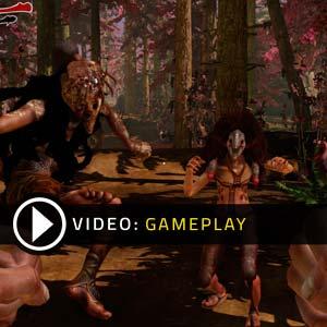 Zeno Clash 2 Gameplay Vidéo