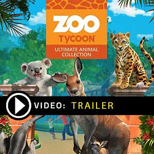 Acheter Zoo Tycoon Ultimate Animal Collection Clé CD Comparateur Prix